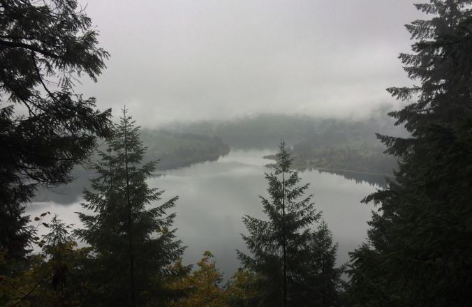 rain view